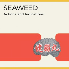 Seaweed - Actions And Indications LP